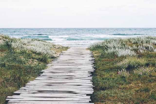 Camino de madera hacia la playa